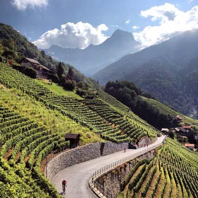 Alpenbrevet Guest Review Neill Weir | Col de la Croix | Brevet